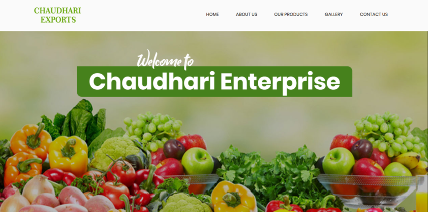 Web Development in Ahmedabad for CHAUDHARI EXPORTS